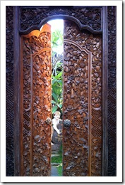 Yaacov Apelbaum The Doors of Ubud-12