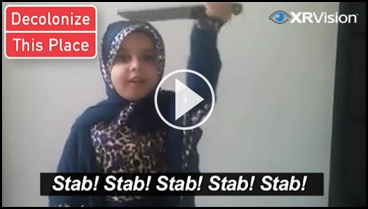 The Stab Video
